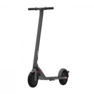 Scooter Monopattino ELETTRICO NINEBOT SEGWAY E25E
